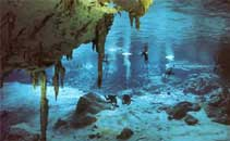 go diving in the cenotes if you are a diver its a must all over the riviera maya