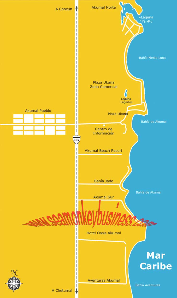 maps playa del carmen quintana roo riviera maya map