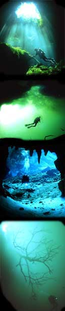 cenotes caverns in the riviera maya playa del carmen and tulum